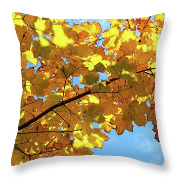 Throw Pillow featuring the photograph Brilliant Imperfections by Rachel Cohen