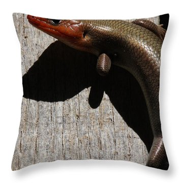 Broad-headed Skink On Barn  Throw Pillow