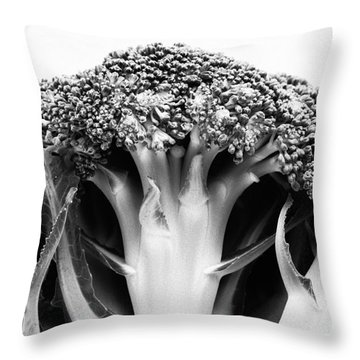 Broccoli On White Background Throw Pillow by Gaspar Avila