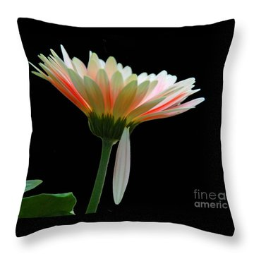 Broken Daisy Throw Pillow by Cindy Manero