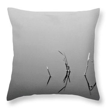 Throw Pillow featuring the photograph Broken Reeds by Dan Wells