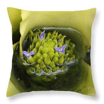 Bromeliad Garden Pool 2 Throw Pillow