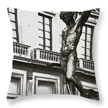 Throw Pillow featuring the photograph Bronze Icon by Eric Tressler