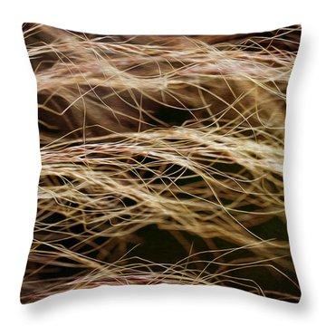 Bronzed Grasses. Throw Pillow