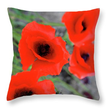 Brothers Of Red Throw Pillow by Empty Wall
