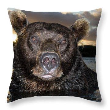 Brown Bear Ursus Arctos In River Throw Pillow by Sergey Gorshkov