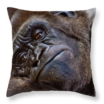 Brown Eyes Throw Pillow by Jill Smith