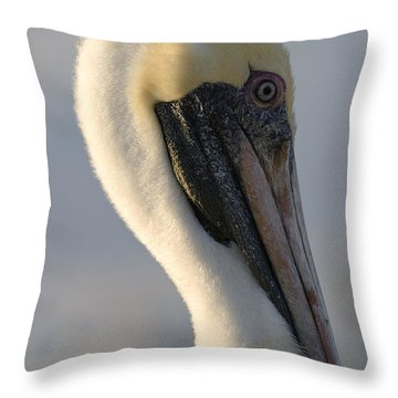 Throw Pillow featuring the photograph Brown Pelican Profile by Ed Gleichman