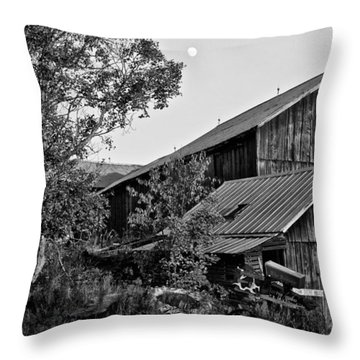 Brownies Barn  Throw Pillow