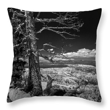 Bryce Canyon - Dead Tree Black And White Throw Pillow