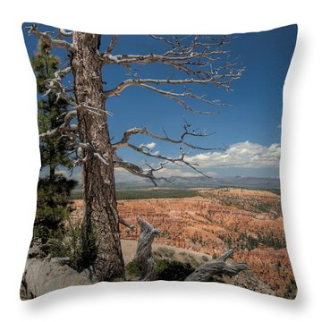 Bryce Canyon - Dead Tree Throw Pillow
