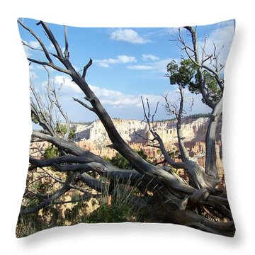 Bryce Canyon Throw Pillow by Dany Lison