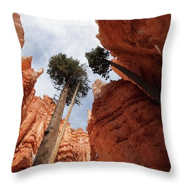Throw Pillow featuring the photograph Bryce Canyon Towering Hoodoos by Karen Lee Ensley