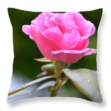 Bubblegum Rose Throw Pillow