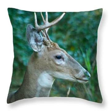 Buck Profile 9634 Throw Pillow by Michael Peychich