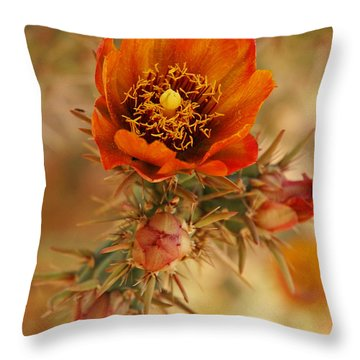 Buckhorn Cholla 2 Throw Pillow