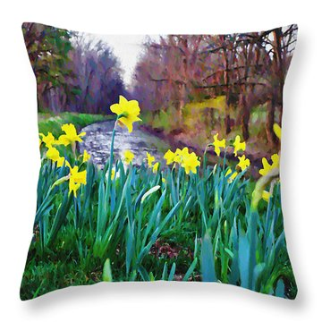 Bucks County Spring Throw Pillow by Bill Cannon