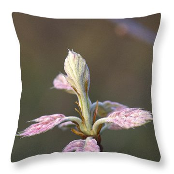Budding Oak Leaves Throw Pillow
