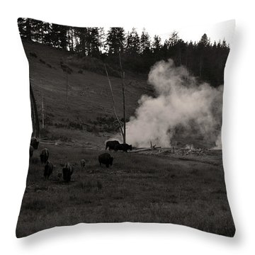 Buffalo Apocalypse  Throw Pillow