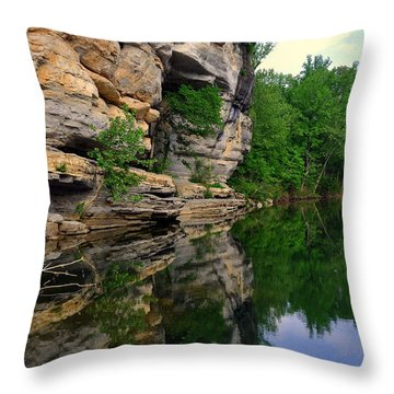 Buffalo Bluff Reflections Throw Pillow by Marty Koch