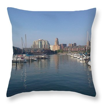 Throw Pillow featuring the photograph Buffalo New York  by Darleen Stry