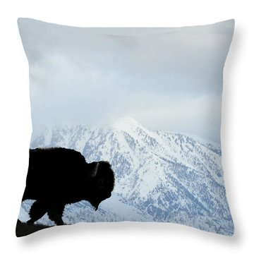 Throw Pillow featuring the photograph Buffalo Suvived Another Yellowstone Winter by Dan Friend