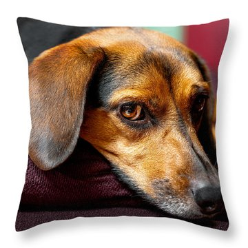 Buffy Throw Pillow by Christopher Holmes