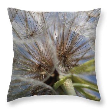 Bug's Eye View Throw Pillow
