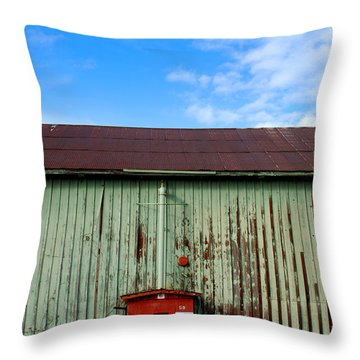 Throw Pillow featuring the photograph Building Series - Red Shack by Kathleen Grace
