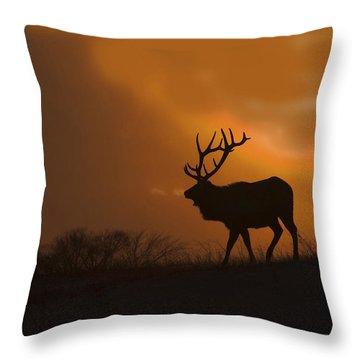 Bull Elk Frozen Sunset Throw Pillow