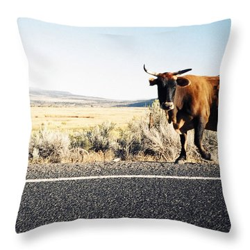 Bull On The Road Throw Pillow by Peter Mooyman