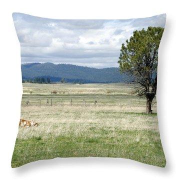 Bull Throw Pillow by Sara Stevenson