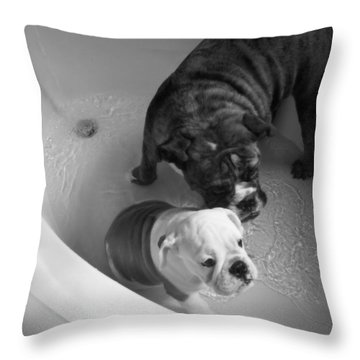 Throw Pillow featuring the photograph Bulldog Bath Time by Jeanette C Landstrom