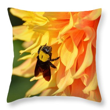 Bumblebee Throw Pillow by Fotosas Photography
