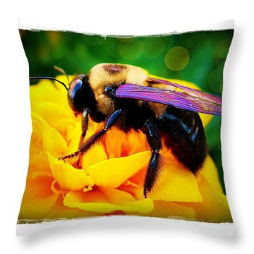 Bumblebee With Bokeh Throw Pillow by Judi Bagwell