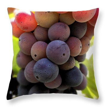 Bunch Of Ripening Grapes Throw Pillow by Anne Mott
