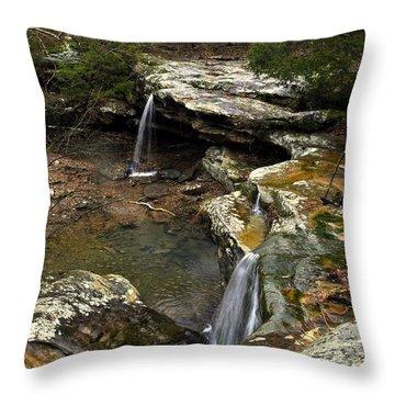Burden Falls Throw Pillow by Marty Koch