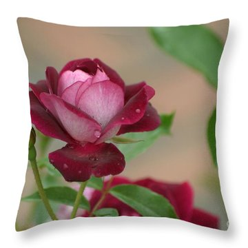 Throw Pillow featuring the photograph Burgundy Iceberg by Living Color Photography Lorraine Lynch