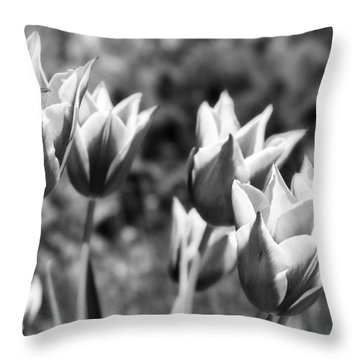 Burgundy Yellow Tulips In Black And White Throw Pillow by James BO  Insogna