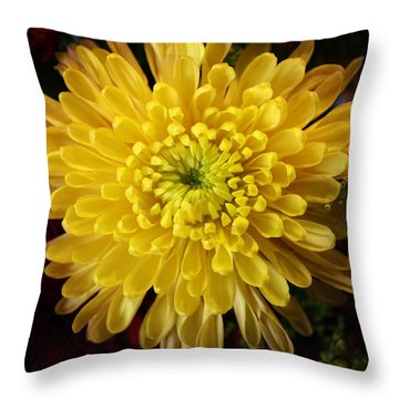 Burst Of Yellow Throw Pillow by Bruce Bley