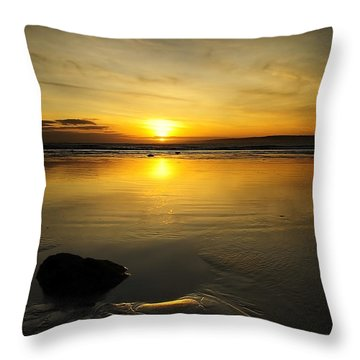 Bursting Out Throw Pillow by Svetlana Sewell