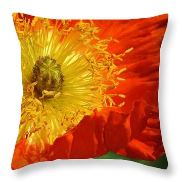 Bursting Peony Throw Pillow