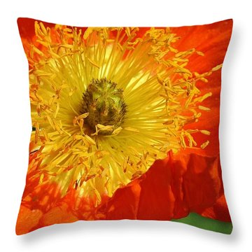 Bursting Peony Throw Pillow