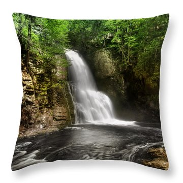 Bushkill Waterfalls Throw Pillow by Yhun Suarez