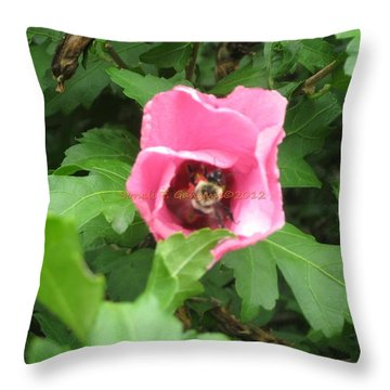 Busy B  In Hibiscus Throw Pillow by Sonali Gangane