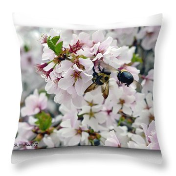 Busy Bees Throw Pillow by Brian Wallace