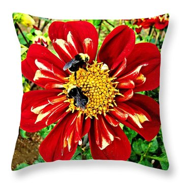 Throw Pillow featuring the photograph Busy Bees by Nick Kloepping