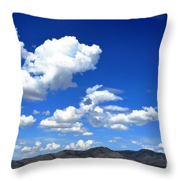 Butte Valley Nevada Throw Pillow