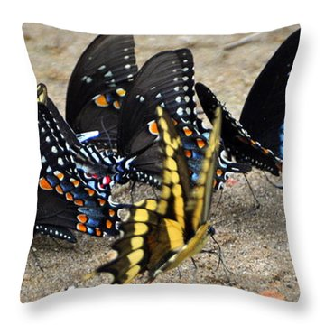Butterfles And More Butterflies Throw Pillow by Marty Koch