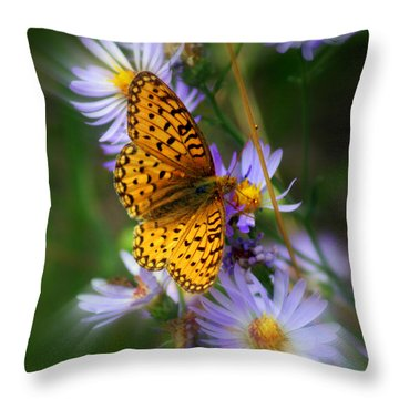 Butterfly Blur Throw Pillow by Marty Koch
